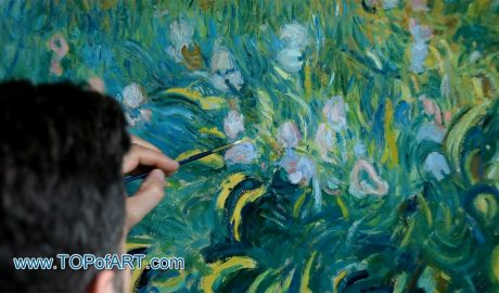 Irises by Monet - Painting Reproduction Video
